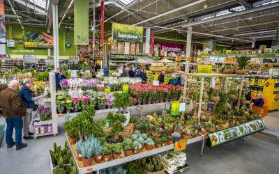 Coronacrisis: Duitse bloemenwinkels, bouwmarkten en tuincentra mogen weer open