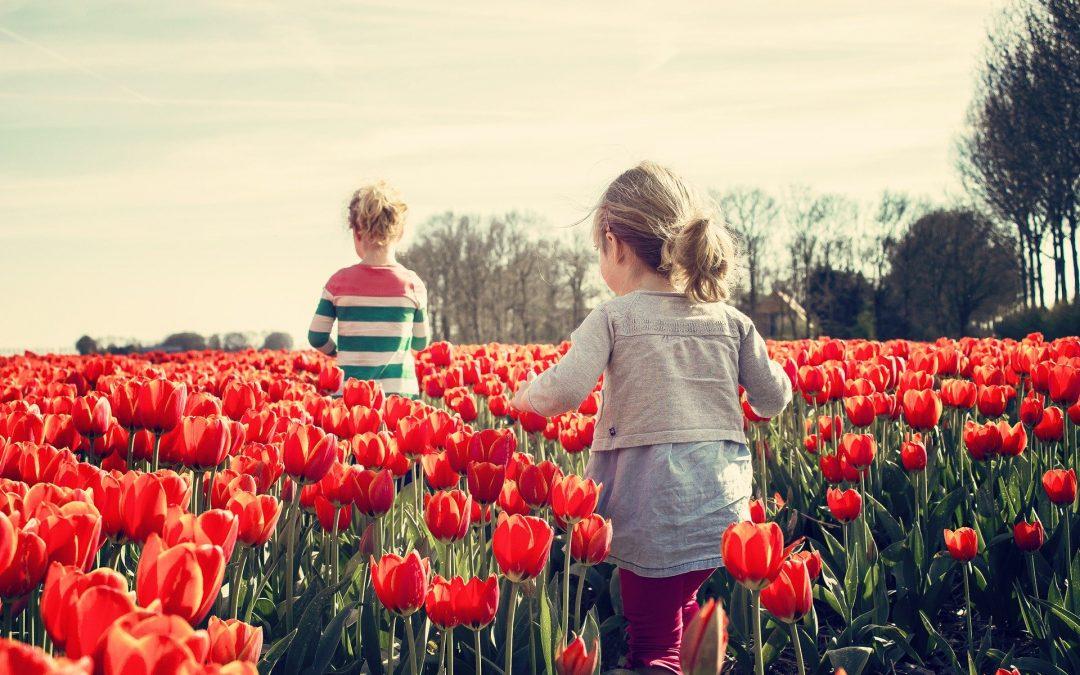 Studie: Niederländische Kinder sind am glücklichsten