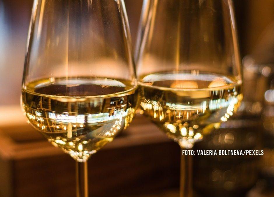 """Wein aus Ostfriesland: """"Weinberg"""" entsteht auf dem Fehn"""